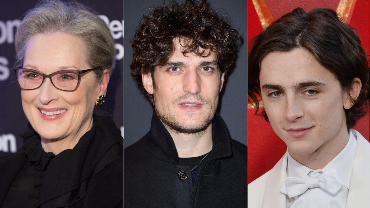 Louis Garrel Meryl Streep Timothée Chalamet Little Women