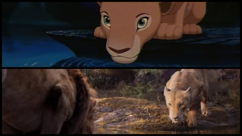 Le Roi Lion 1994 vs. 2019 : Nala adulte