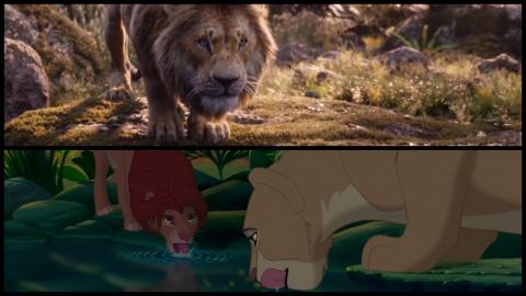 Le Roi Lion 1994 vs. 2019 : Simba adulte